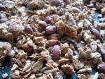 nut&seed granola