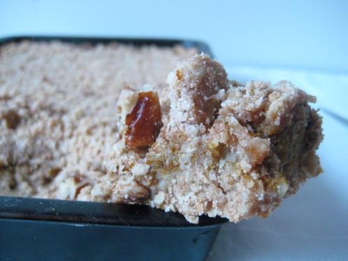 squidgy pumpkin oat bars